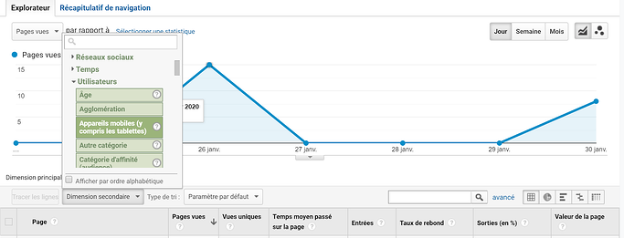 filtre google analytics