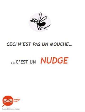 mouche-1